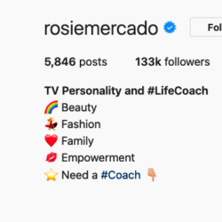 instagram influencer bio