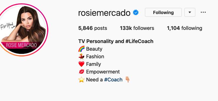 instagram influencer bio